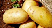 خواص و مضرات سیب زمینی ، 25 خاصیت سیب زمینی برای سلامتی بدن
