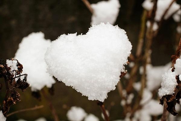 قلب برفی