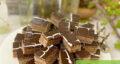 طرز تهیه شیرینی میکادو شکلاتی مجلسی و بازاری با آرد نخودچی