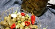 طرز تهیه ترشی شپله یا کاپاریس (هندوانه ابوجهل) خانگی خوشمزه