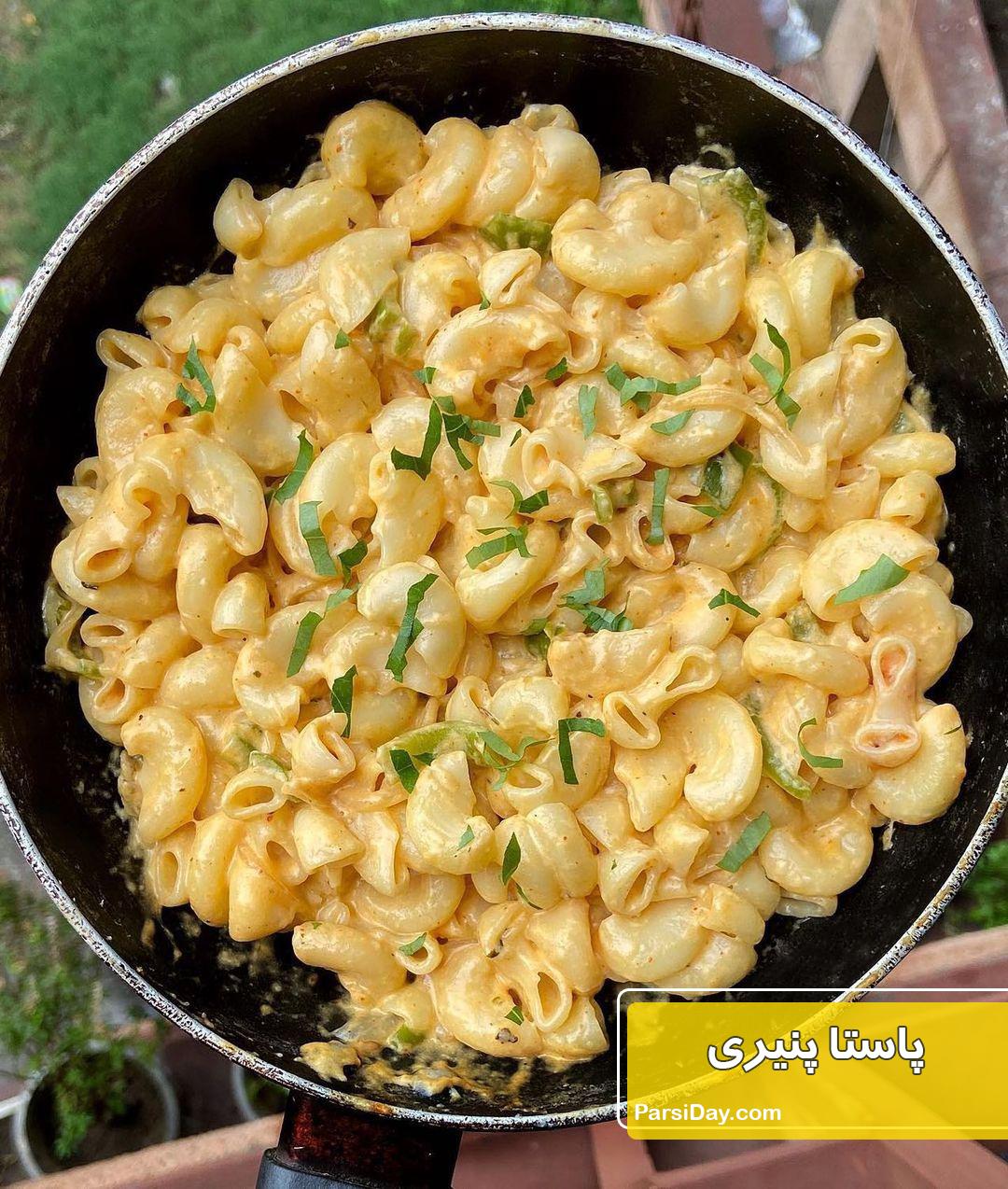 طرز تهیه پاستا پنیری