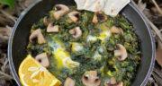 طرز تهیه خوراک اسفناج و قارچ خوشمزه و رژیمی بدون گوشت