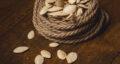 طرز تهیه تخم کدو بو داده نمکی خانگی خوشمزه در ماهیتابه و فر